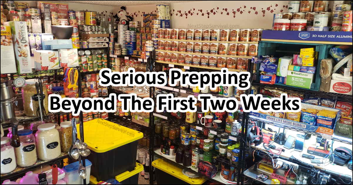 Read more about the article Expanding Our Prepper Pantry Beyond Two Weeks