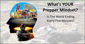 Read more about the article The Prepper Mindset – And Going Off The Deep End