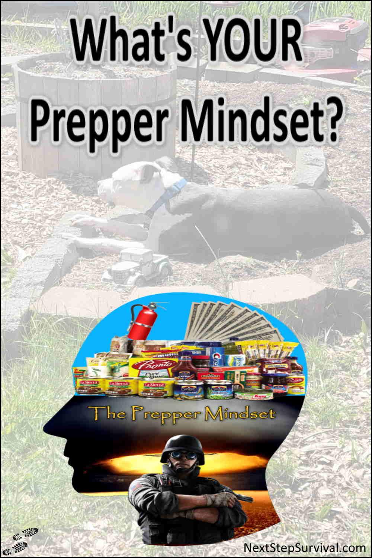 Pinterest Image - The Prepper Mindset
