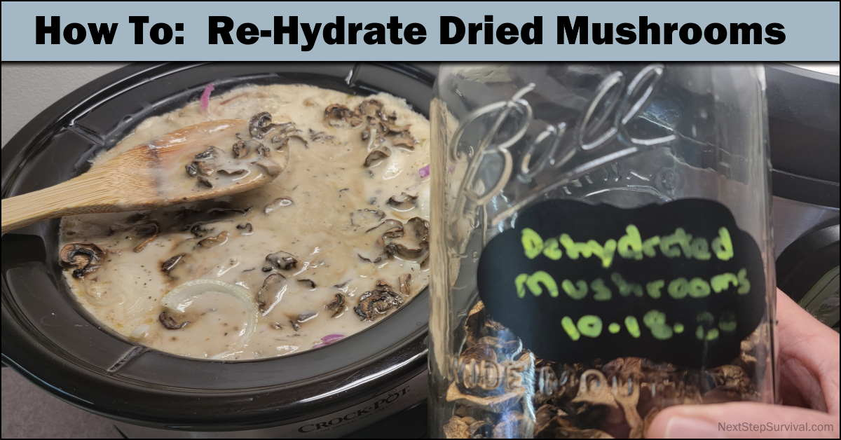 You are currently viewing How To Rehydrate Dried Mushrooms (And Other Veggies) – Video