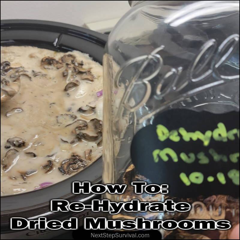 Instagram Image - How To Re-Hydrate Dried Mushrooms